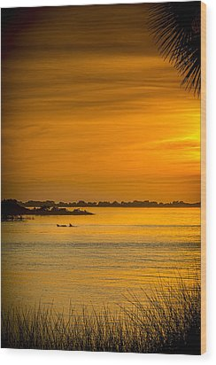 Bayport Dolphins Wood Print by Marvin Spates