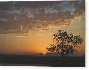 Wood Print featuring the photograph Bayview Sunset by Sonya Lang