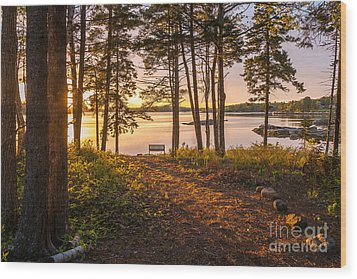 Bayview Sunset Wood Print by Susan Cole Kelly