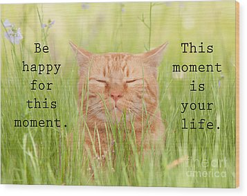 Be Happy For This Moment Wood Print