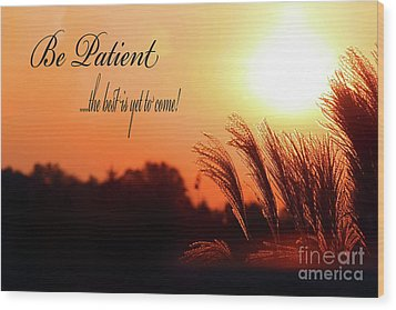 Be Patient Wood Print by Cathy  Beharriell