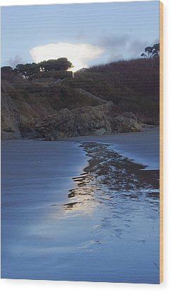 Wood Print featuring the photograph Beach Access by Adria Trail