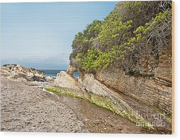 Beach At Montana De Oro Wood Print by Artist and Photographer Laura Wrede