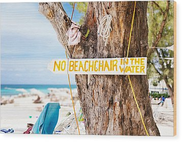 Beach At Rum Point Wood Print by Jo Ann Snover