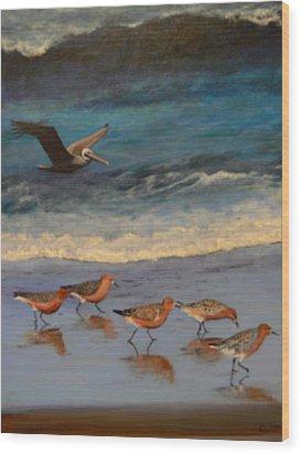 Beach Birds Wood Print by Catherine Hamill