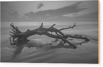 Beach Bones Wood Print by Debra and Dave Vanderlaan