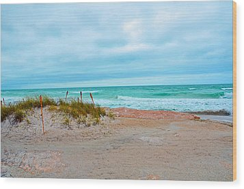 Wood Print featuring the photograph Beach Breeze by Amanda Vouglas