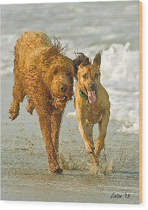 Beach Buddies Wood Print by Larry Linton