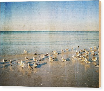 Beach Combers - Seagull Art By Sharon Cummings Wood Print by Sharon Cummings
