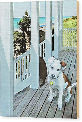 Beach Dog 1 Wood Print by Jane Schnetlage
