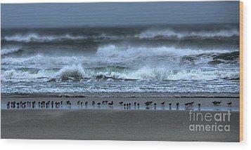 Beach Feast - Outer Banks Ocracoke Wood Print by Dan Carmichael