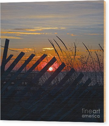 Beach Fence Wood Print