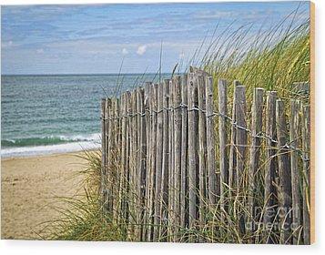 Beach Fence Wood Print by Elena Elisseeva