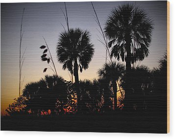 Beach Foliage At Sunset Wood Print by Phil Penne