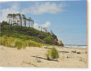 Beach Forest Wood Print by Crystal Hoeveler
