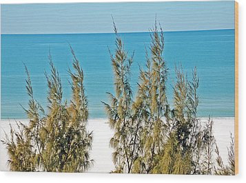 Beach Front View Wood Print by Aimee L Maher Photography and Art Visit ALMGallerydotcom
