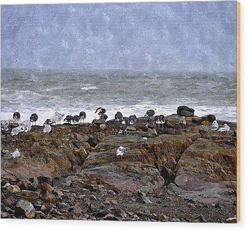 Beach Goers Bgwc Wood Print