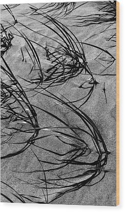 Beach Grass Black And White Wood Print by Mary Bedy