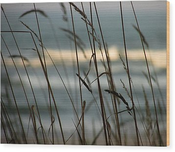 Wood Print featuring the photograph Beach Grass by Kimberly Mackowski