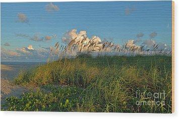 Beach Greenery Panorama Wood Print by Bob Sample
