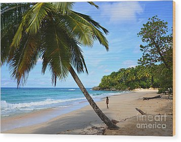 Wood Print featuring the photograph Beach In Dominican Republic by Jola Martysz
