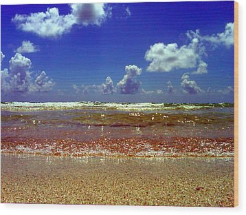 Wood Print featuring the photograph Beach by J Anthony