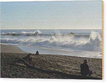 Beach Life Wood Print