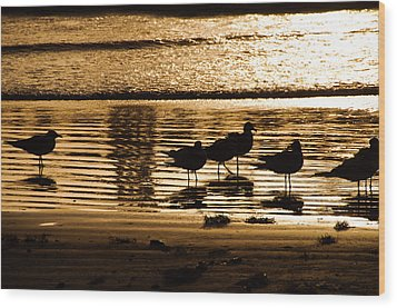 Beach Morning Wood Print by John Collins