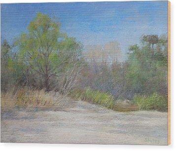 Beach  Wood Print by Nancy Stutes