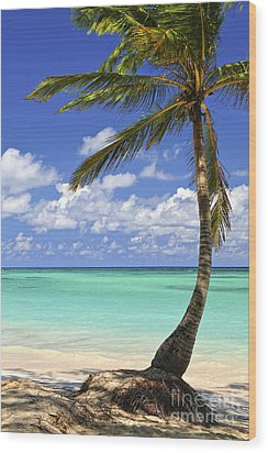 Beach Of A Tropical Island Wood Print