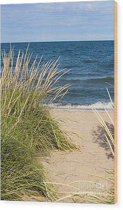 Beach Path Wood Print by Barbara McMahon