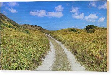 Beach Road Wood Print by Sean Davey