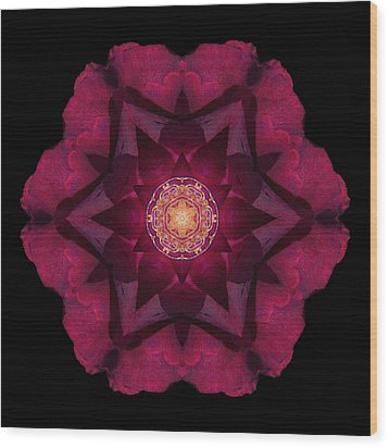 Beach Rose I Flower Mandala Wood Print