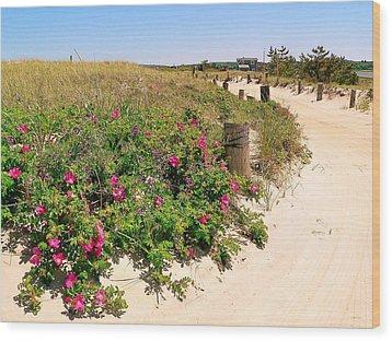 Beach Roses Wood Print by Janice Drew