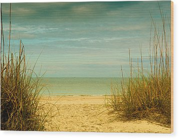 Beach Scene Wood Print by Carolyn Dalessandro