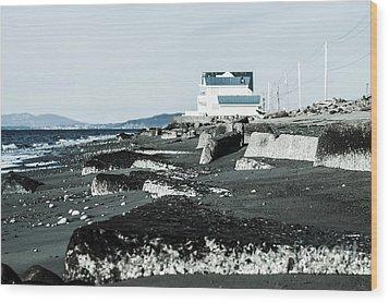 Beach Slabs Wood Print by Arlene Sundby