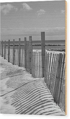 Beach Snow  Wood Print by Catherine Reusch Daley