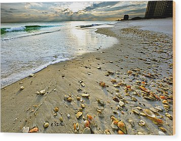 Beach Sunset And Seashells Wood Print by Eszra Tanner