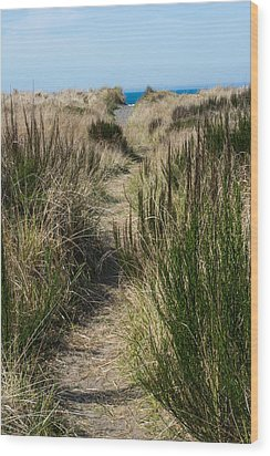 Beach Trail Wood Print