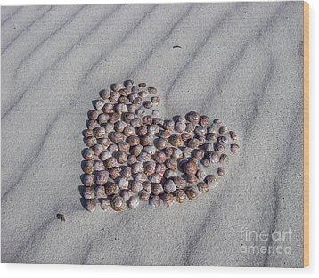 Beach Treasure Wood Print by Jola Martysz