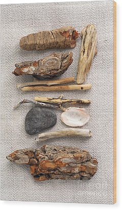 Beach Treasures Wood Print by Elena Elisseeva