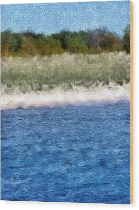 Beach With Short Dune Wood Print by Michelle Calkins