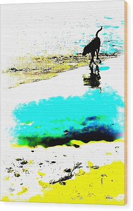 Beachcomber Wood Print by Brian D Meredith