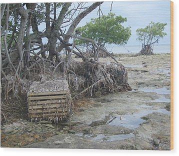 Wood Print featuring the photograph Beached Lobster Trap by Robert Nickologianis