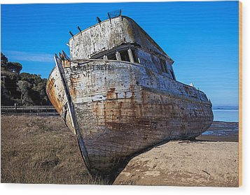 Beached Point Reyes Wood Print by Garry Gay