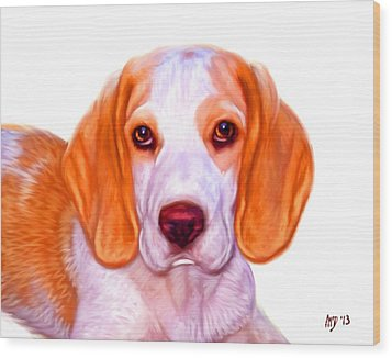 Beagle Dog On White Background Wood Print by Iain McDonald