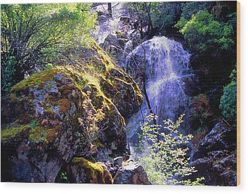 Bear Creak Tributary Bryceburg Junction Near Yosemite Wood Print