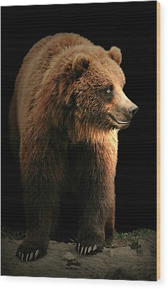 Bear Essentials Wood Print