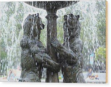 Bear Fountain Wood Print