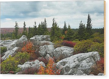 Bear Rocks Wood Print